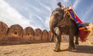 インドの気温・旅行のベストシーズンは??エリア別にご紹介